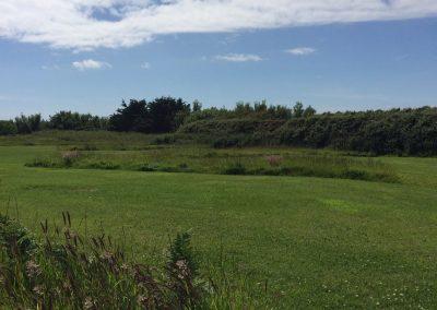 Spacious grass camping pitches with natural grass boundaries at Llanungar