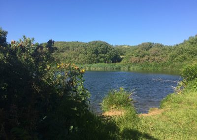 Pond on route to Porth y Rhaw